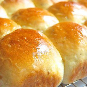 Mashed Potato Dinner Rolls