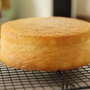 8 inch Sponge Cake